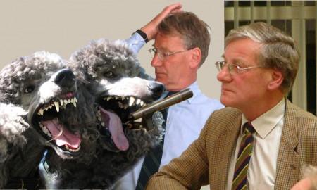 Gijs Stork - Honden